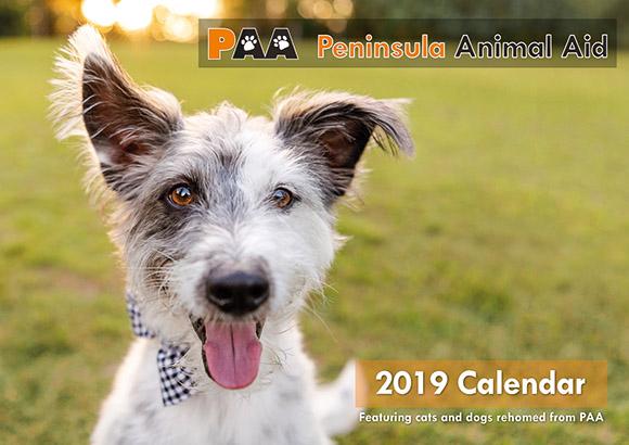 Home - Peninsula Animal Aid
